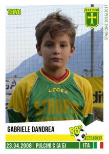 pulcinia5_gabriele-dandrea
