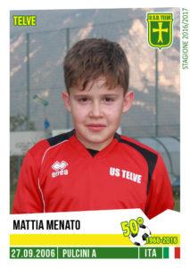 pulcinia_mattia-menato