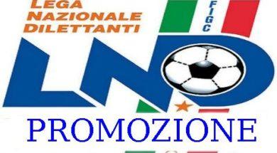Logo-Promozione
